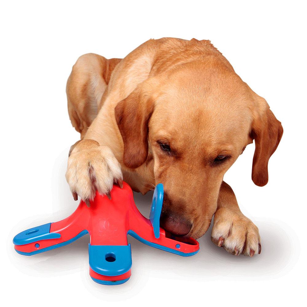 olores de perro en casa - ¿Olor a perro en casa? ¡Descubre cómo eliminarlos!